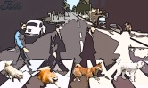 Beatles walking the dogs