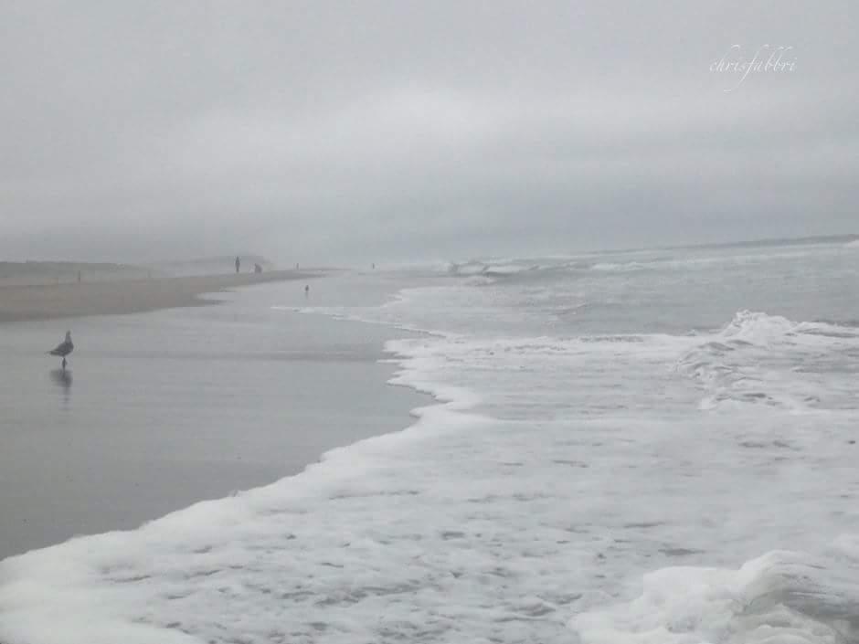 Ocean Beach August 2016, 1