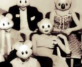 Animal masquerades