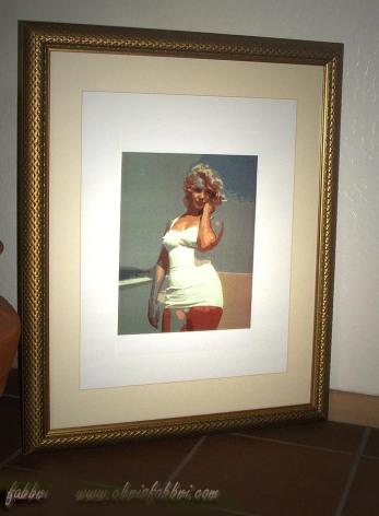 Monroe - framed print
